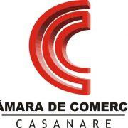 Balance capacitación Carlos Cortés a la Plana Mayor de la Cámara de Comercio de Casanare